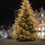 Christbaum-familieplus-Langenegg-Bregenzer-Christkindlmarkt-Baum.jpg