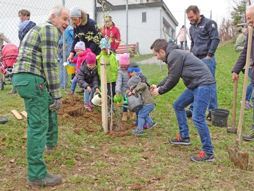 Familieplus-Jahrgangsbaum-2018-Sulzberg-1