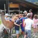 Land-familieplus-Sommerprogramm