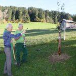 Pfarrer Peter Loretz segnet Jahrgangsbaum 2019 Sulzberg