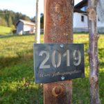 Jahrgangsbaum 2019 familieplus Sulzberg